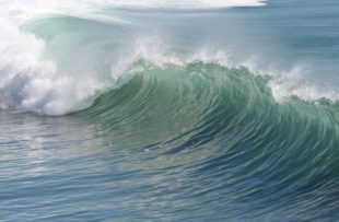 huntington wave